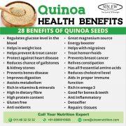 Quinoa Seeds 1kg Gal2